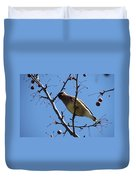 Spring Bird And Berries Duvet Cover