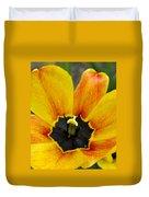 Spring Blossom Sbp Duvet Cover