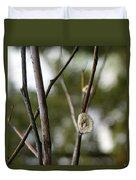 Spring Branches 1 Duvet Cover