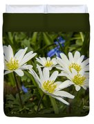 Spring Daisies Duvet Cover