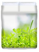 Spring Green Sprouts Duvet Cover by Elena Elisseeva
