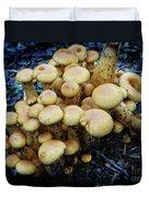 Spring Mushrooms  Duvet Cover