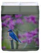 Spring Time Blue Bird Duvet Cover
