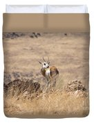 Springbok V3 Duvet Cover