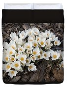 Springtime Abundance - A Bouquet Of Pure White Crocuses Duvet Cover