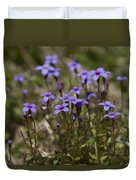 Springtime Tiny Bluet Wildflowers - Houstonia Pusilla Duvet Cover