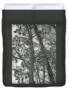 Springtime Woods - New Jesey Pine Barrens - Black And White Duvet Cover