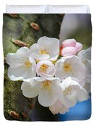Sprouting Cherry Blossoms Duvet Cover