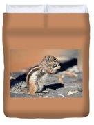 Squirrel Con Queso Duvet Cover