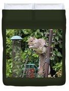 Squirrel Eating Nuts Duvet Cover