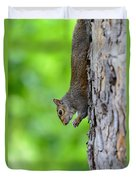 Squirrel In A Tree Duvet Cover