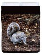 Squirrel In The Park-boston  V6 Duvet Cover