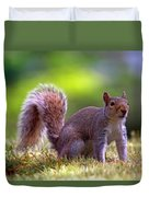 Squirrel On Grass Duvet Cover