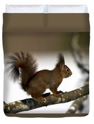 Squirrel Profile Duvet Cover