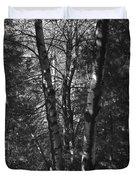 St-denis Woods 2 Duvet Cover