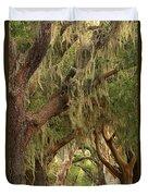 St Simons Island Oaks Duvet Cover