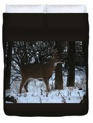 Stag In The Woods Duvet Cover