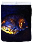 Stained Glass Snoozer Duvet Cover