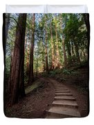 Stairs Into The Woods Duvet Cover