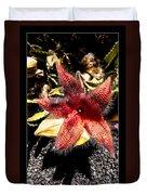 Stapelia Grandiflora Starfish Cactus Duvet Cover
