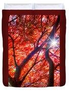 Star Light Thru Maple Duvet Cover