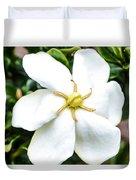 Starfish Gardenia  Duvet Cover