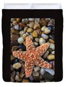 Starfish On Rocks Duvet Cover
