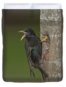 Starling And Young Duvet Cover