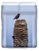 Starlings 2 Duvet Cover