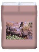 Starlings Fight Duvet Cover