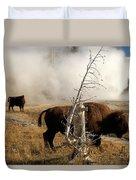 Steaming Bison Duvet Cover