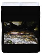 Steelhead Resting In The Shallows Duvet Cover