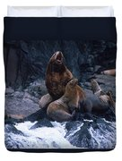 Stellar Sea Lions On The Rocks Duvet Cover