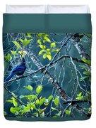 Steller's Jay In A Tree Duvet Cover