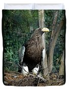 Stellers Sea Eagle Duvet Cover