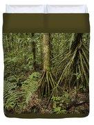 Stilt Roots In The Rainforest Ecuador Duvet Cover