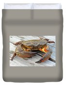 Stone Crab Baby Duvet Cover