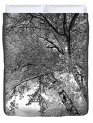 Storm Over The Cottonwood Trees - Black And White Duvet Cover