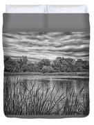 Storm Passing The Pond In Bw Duvet Cover