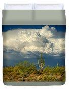 Stormy Desert Skies  Duvet Cover