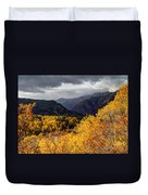 Stormy Fall Along The Alpine Loop - Utah Duvet Cover