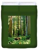 Stout Grove Coastal Redwoods Duvet Cover