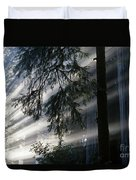Stout Grove Redwoods With Sunrays Breaking Through Fog Duvet Cover