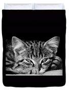 Stray Kitten Duvet Cover