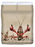 Striped Crayfish  Duvet Cover