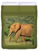 Strolling Elephant Duvet Cover