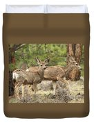 Strolling Through The Rockies Duvet Cover
