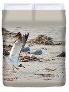 Strutting Seagull On The Beach Duvet Cover