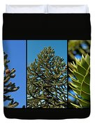 Study Of The Monkey Puzzle Tree Duvet Cover