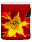 Stunning Daylily  Duvet Cover